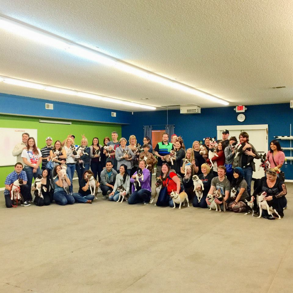 Is this is great group, or what? Through a miracle aided by treats and patience, all party guests posed for a group photo.