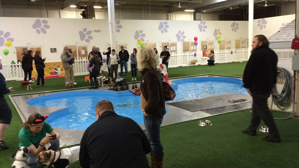 There was lots of bone-shaped pool fun for everyone!